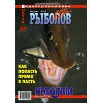 DVD diski 37 Rybolov-Elite