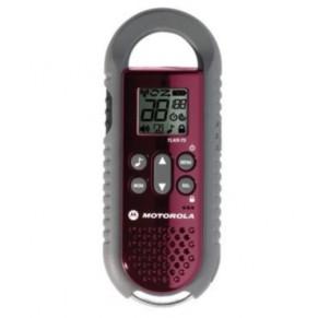TLKR T5 Motorola - Фото