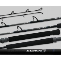 Saltiga G Boat Conventional Travel Rod SAG703MR-TR, Daiwa