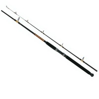 Power Stick Trolling Spin 240 Salmo
