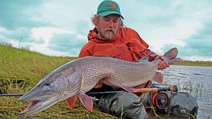 Рыбалка в ноябре на спиннинг щука