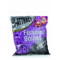 Squid & Octopus Boilie 20mm Shelf Life 1kg бойлы Dynamite Baits