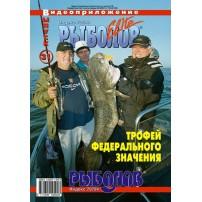 DVD диски  31