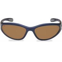 RVG-003B, окуляри RAPALA