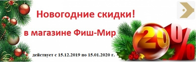 New-Year-1