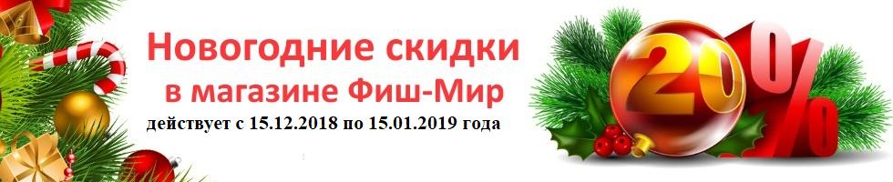 NE_2019