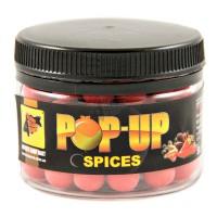Pop-Ups Spicy 10мм 50гр бойлы CC Baits