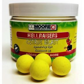 Citrus Blast Hellraisers 14mm (35) бойлы CC Moore - Фото